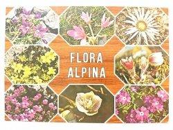FLORA ALPINA. OSIEM UJĘĆ