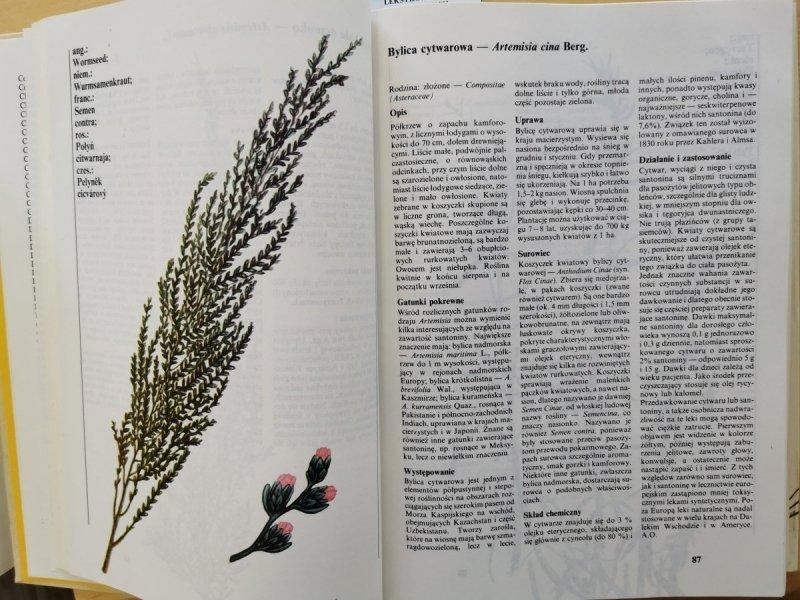 Leksykon roślin leczniczych - red. Rumińska. Ożarowski 1990