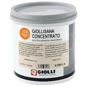 GIOLLISANA CONCENTRATO - 0,75L (dodatek antygrzybiczny do farb i gruntów)