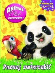 Animal Club Nauka dla zucha 1 Poznaj zwierzaki!
