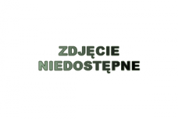 Wkładka do pojemnika zpoliwęglanu WP - 1/4 REDFOX 00001812 WP - 1/4