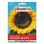 SŁONECZNIK ogrodowy JADALNY nasiona 10 g PLANTICO