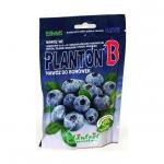 PLANTON B nawóz do borówek i roślin kwasolubnych 200g