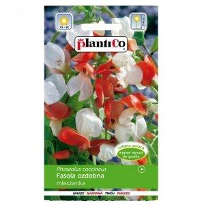FASOLA ozdobna MIX kolorów nasiona kwiatów 10g