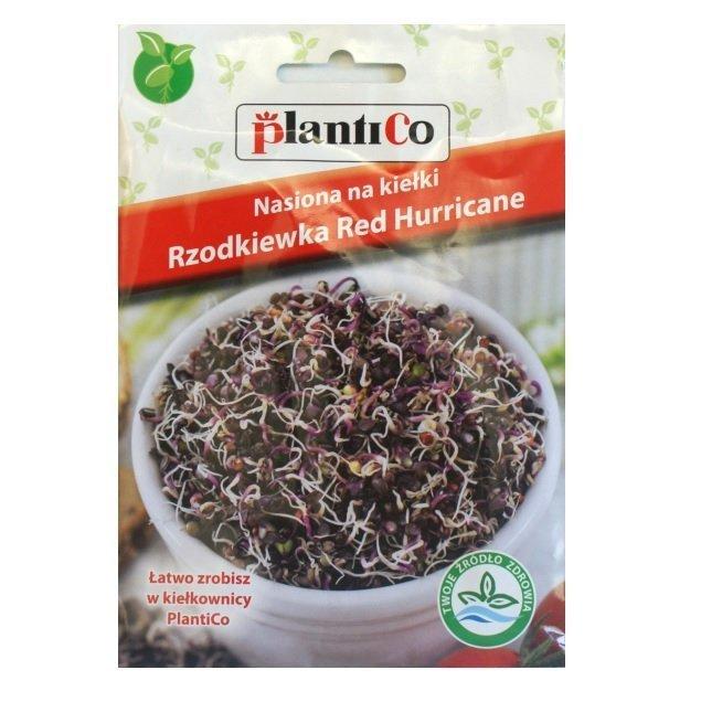 Rzodkiewka czerwona nasiona na kiełki