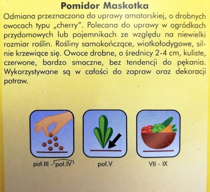 Pomidor MASKOTKA opakowanie