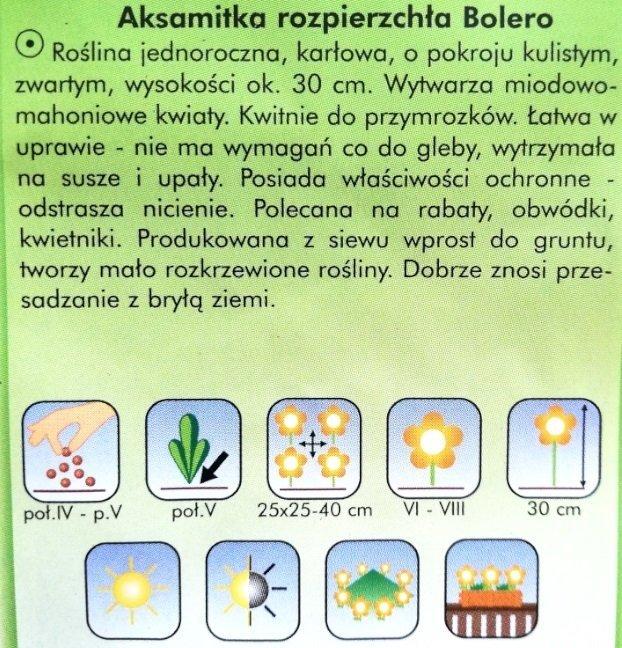 Aksamitka Bolero nasiona Plantico