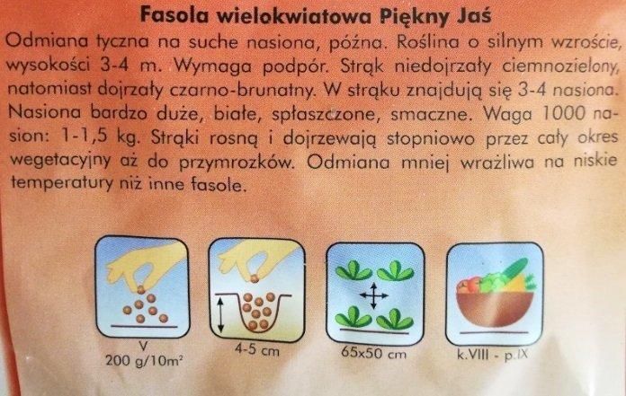 Fasola tyczna na suche ziarno PIĘKNY JAŚ nasiona 40g