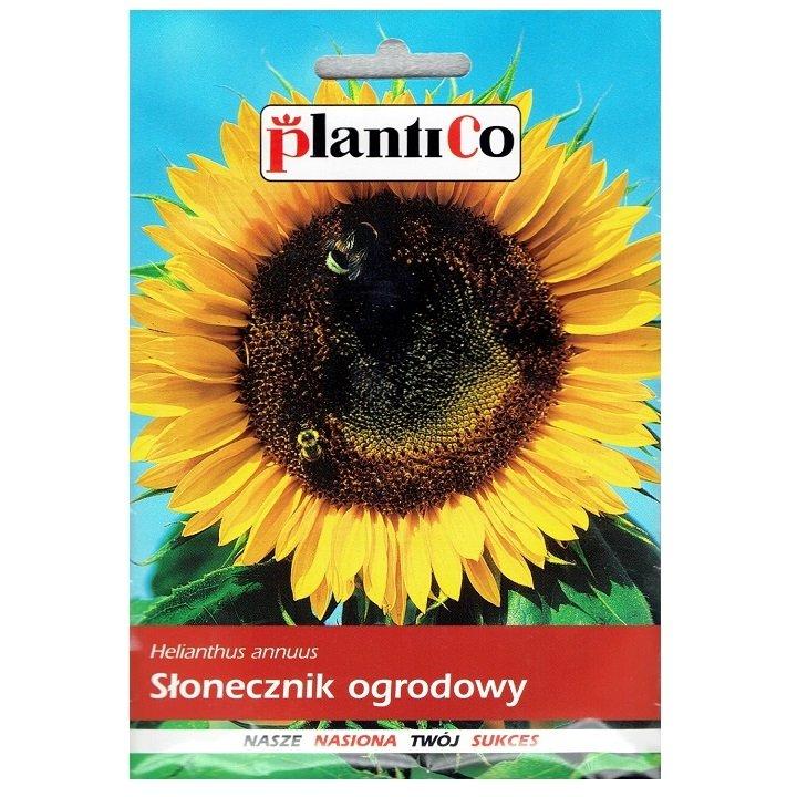 Słonecznik ogrodowy Plantico 10g
