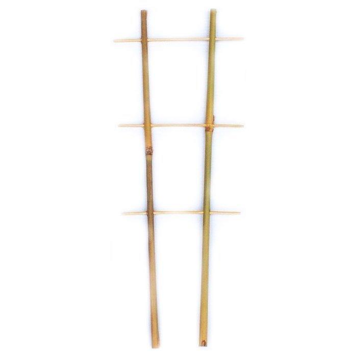 Drabinka bambusowa