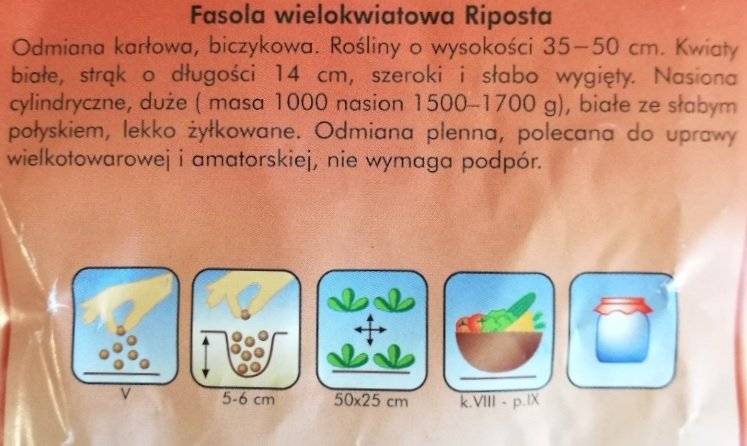 Fasola Riposta nasiona Plantico