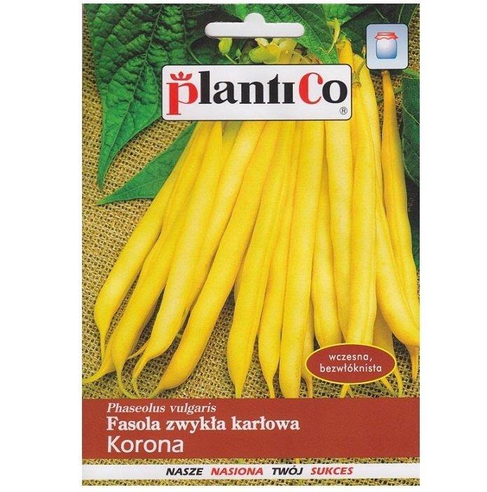 Fasola Korona nasiona