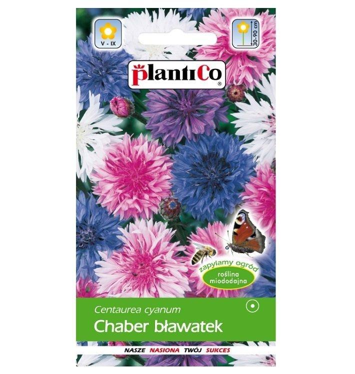 Chaber bławatek nasiona Plantico