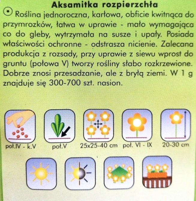 Aksamitka nasiona Plantico