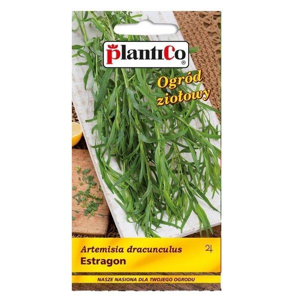 Estragon nasiona