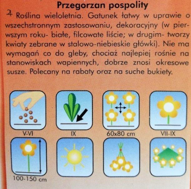 Przegorzan pospolity nasiona Plantico