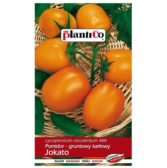 Pomidor Jokato nasiona