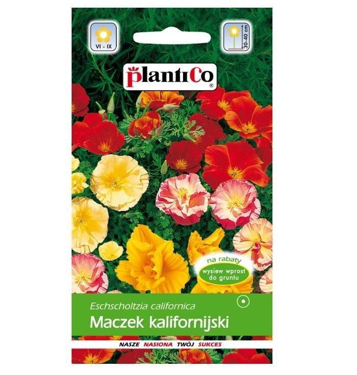 Maczek kalifornijski nasiona Plantico
