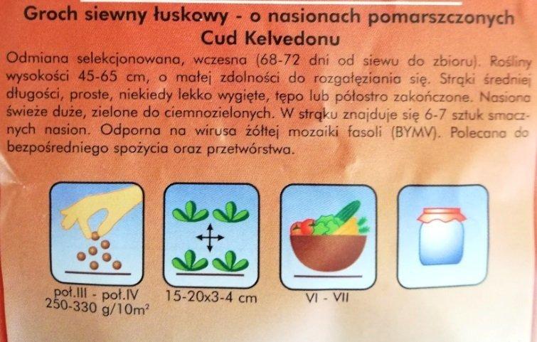 Groszek Cud Kelvedonu nasiona Plantico