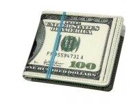 Dolarowy portfel - plik banknotów