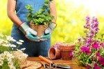 4 sposoby na aromatyczne zioła w Twojej kuchni.