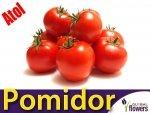 Pomidor gruntowy Atol (Lycopersicon Esculentum) 1g