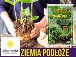 Podłoże do roślin zielonych i palm COMPO SANA 20L