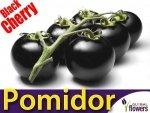 Pomidor Czarny Black Cherry Koktajlowy (Lycopersicon Esculentum)