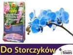 Orchid START odżywka do storczyków 2w1 COMPO 30ml