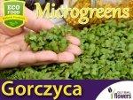 Microgreens - Gorczyca sarepska 3g