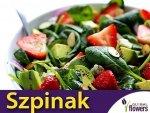 Szpinak Warzywny Matador (Spinacia oleracea) op. XXL 500 g