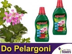 Agrecol Nawóz mineralny do pelargonii 1L