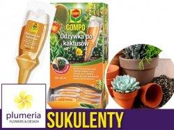 Odżywka do kaktusów i sukulentów COMPO 30ml