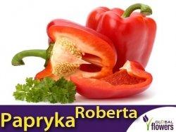 Papryka ROBERTA Czerwona Słodka  (Capsicum annuum) nasiona L 0,5g