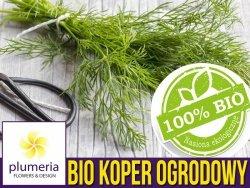 BIO Koper ogrodowy nasiona ekologiczne 5g