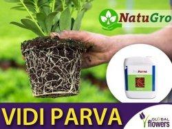 VIDI PARVA nawóz zawierający substancje stymulujące rozwój korzeni 5 litrów