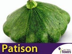 Dynia Patison zielona 'Gagat' XL 100g (Cucurbita pepo)