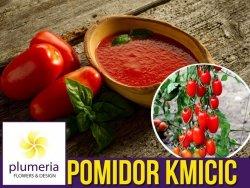 Pomidor gruntowy karłowy KMICIC (Lycopersicon Esculentum) nasiona 1g