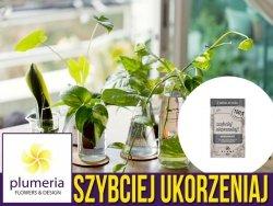 Szybciej ukorzeniaj - 100% naturalny ukorzeniacz do młodych roślin 50 ml