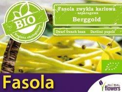BIO Fasola szparagowa karłowa BERGGOLD żółta nasiona ekologiczne 30g