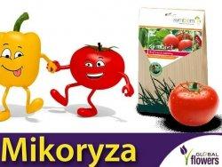 Mikoryza Grzybnia do pomidorów i papryk Symbivit 150g