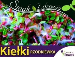 Nasiona na Kiełki - Rzodkiewka 250g opakowanie XXL