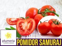 Pomidor SAMURAJ karłowy (Lycopersicon Esculentum) nasiona 0,5g