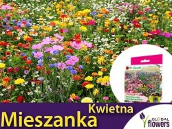 Kwietna łąka Mieszanka roślin na ostatnią chwilę (jednoroczne) nasiona 125g