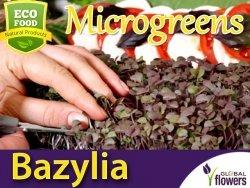 Microgreens - Bazylia Dark Opal 3g