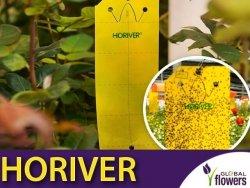 HORIVER żółte tablice lepowe (25x40cm) 12 sztuk