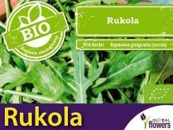BIO Rukola nasiona ekologiczne 0,3g