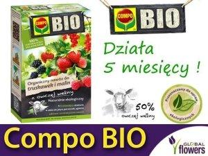 Ekologiczny Organiczny Nawóz z owczej wełny do Truskawek i Malin COMPO BIO 750 g