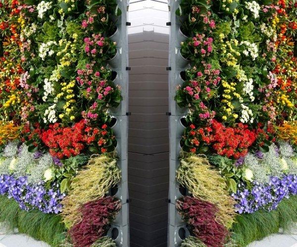 Ogród na ścianie na zewnątrz