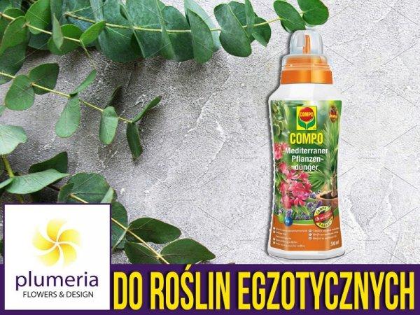 Nawóz płynny do roślin ezgotycznych śródziemnomorskich COMPO 500 ml